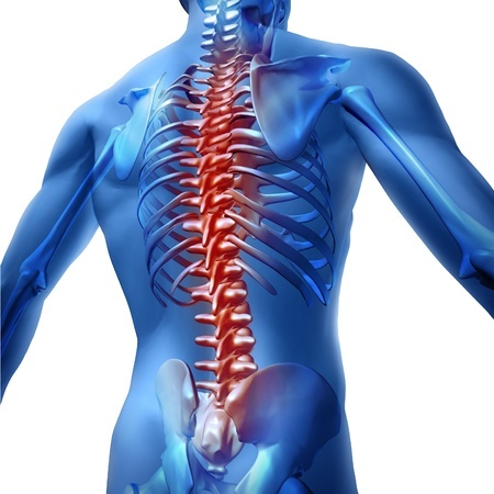 chiropractor-lexington-ma